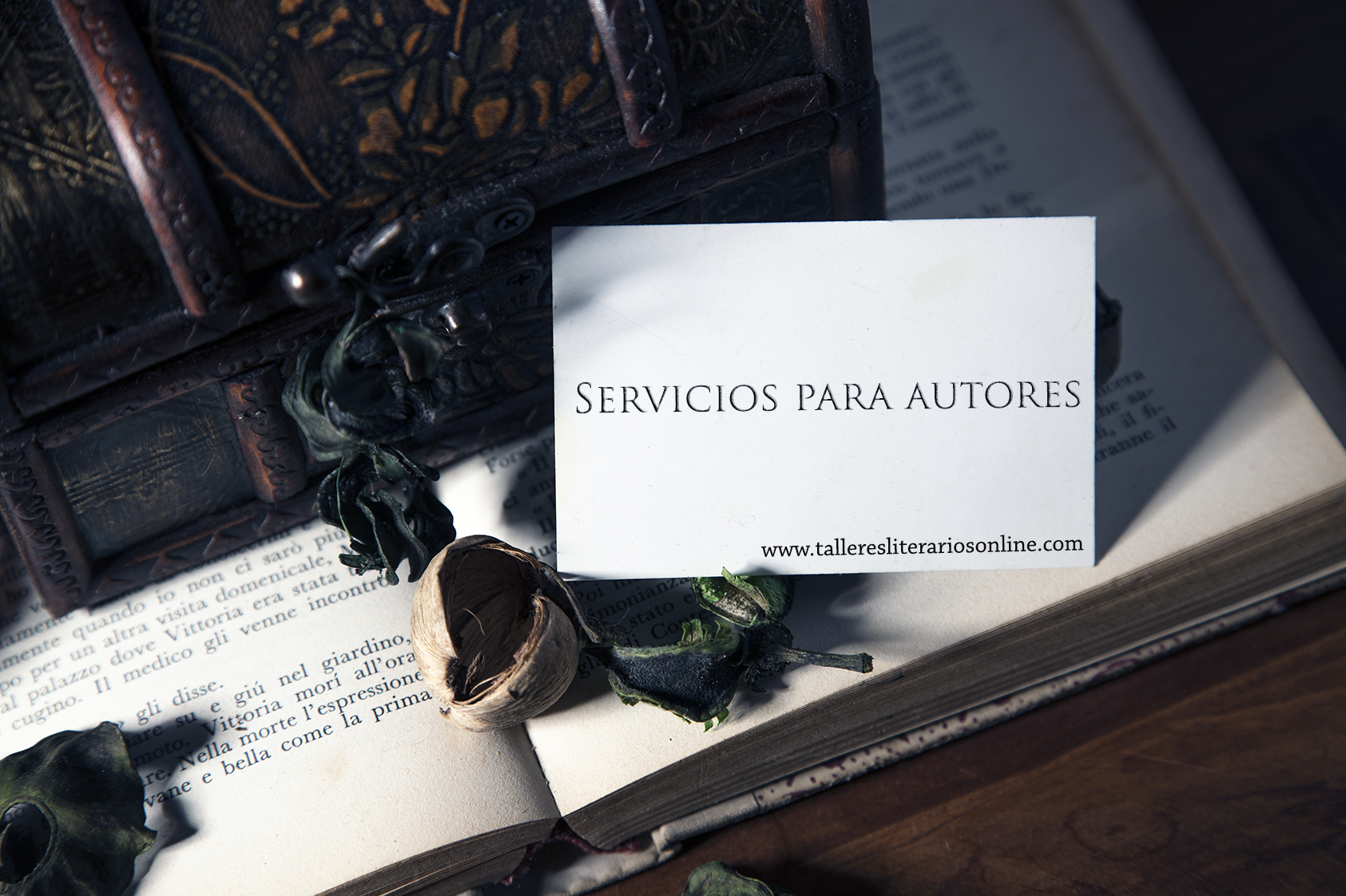 Servicios para autores | Talleres Literarios Online
